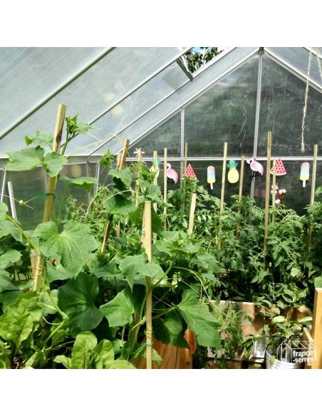 Serre de jardin de grande largeur en polycarbonate et structure aluminium de 7,80m²