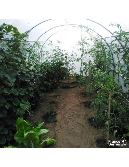 Serre pour tomates 18m²